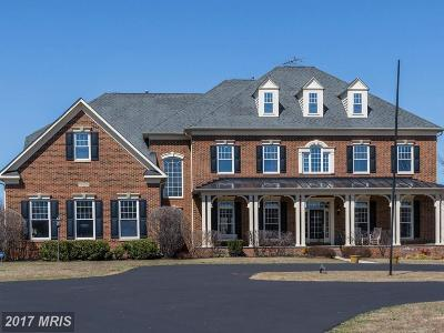 Poolesville Single Family Home For Sale: 15520 Mount Nebo Road