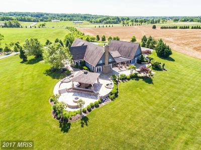Poolesville Single Family Home For Sale: 18900 Beallsville Road