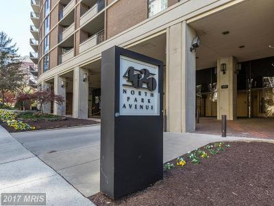 Chevy Chase Condo For Sale: 4620 Park Avenue #508E