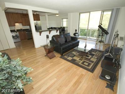 Takoma Park Condo For Sale: 7333 New Hampshire Avenue #711