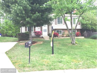 Gaithersburg Single Family Home For Sale: 18217 Mulberry Court