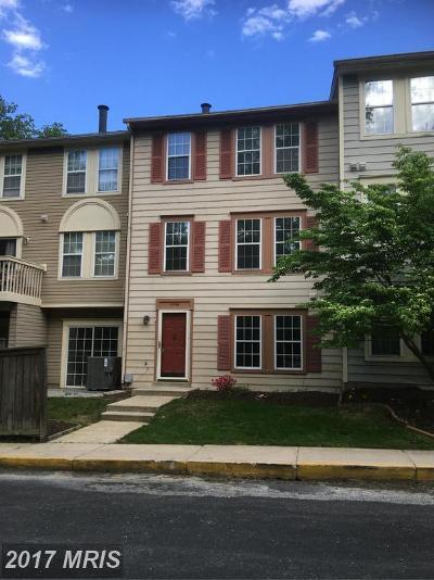 Burtonsville Townhouse For Sale: 14744 Valiant Terrace #13-138
