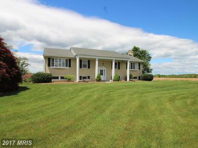 Damascus Single Family Home For Sale: 27000 Clarksburg Road