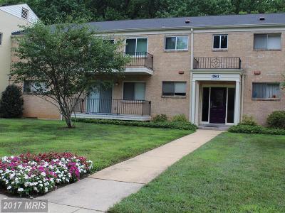 Condo For Sale: 10643 Montrose Avenue #M-2