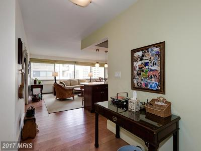 Chevy Chase Condo For Sale: 5500 Friendship Boulevard #1603N