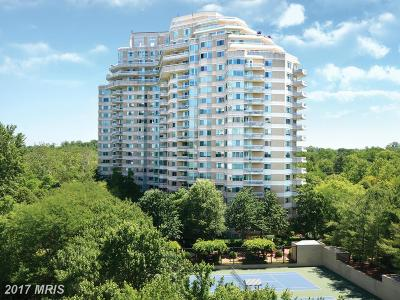 Chevy Chase Condo For Sale: 5600 Wisconsin Avenue #603