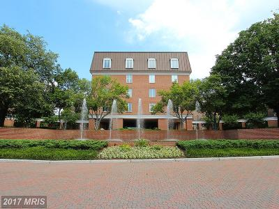 Chevy Chase Condo For Sale: 8101 Connecticut Avenue #S-302