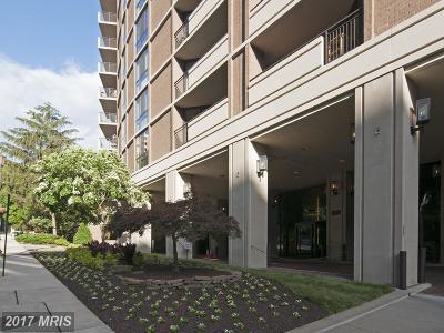 Chevy Chase Condo For Sale: 4620 Park Avenue #711E