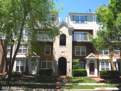 Rockville Townhouse For Sale: 317 Fallsgrove Drive #71