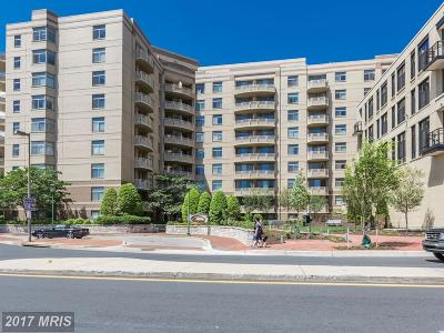 Bethesda Condo For Sale: 7111 Woodmont Avenue #418