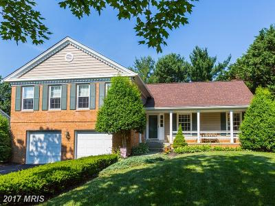 Rockville Single Family Home For Sale: 32 Hollyberry Court