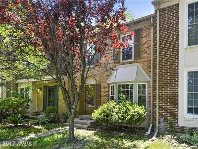 Gaithersburg Townhouse For Sale: 10064 Maple Leaf Drive