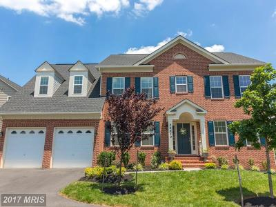 Clarksburg Single Family Home For Sale: 22449 Winding Woods Way