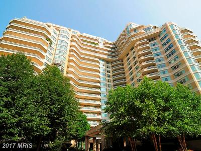 Chevy Chase Condo For Sale: 5610 Wisconsin Avenue #17D