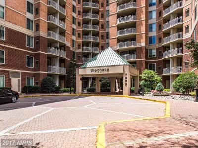 Bethesda Condo For Sale: 7500 Woodmont Avenue #S307