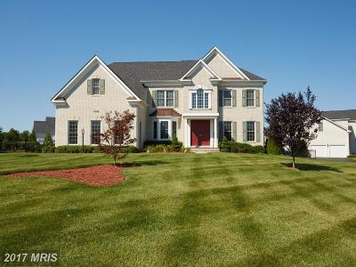 Poolesville Single Family Home For Sale: 17608 Shores Drive