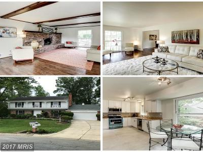Potomac Single Family Home For Sale: 11200 Old Post Road