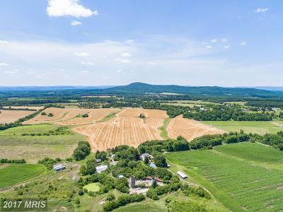 Montgomery, Prince Georges, Anne Arundel, dc, Charles Residential Lots & Land For Sale: 16520 Comus Road