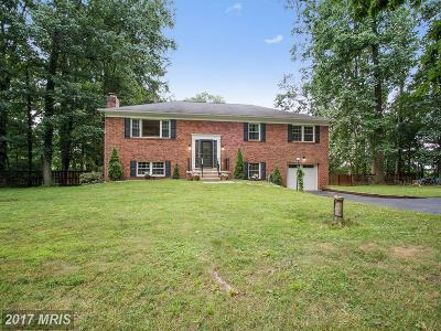 Clarksburg Single Family Home For Sale: 26301 Forest Vista Drive