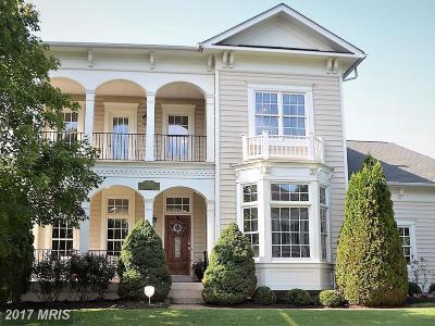 Bristow, Gainesville, Haymarket, Woodbridge, Occoquan, Manassas, Nokesville Single Family Home For Sale: 9285 Sumner Lake Boulevard