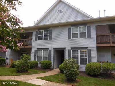 Manassas Condo For Sale: 9214 Azure Court #102