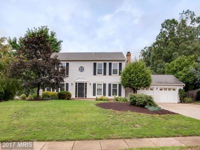 Manassas Single Family Home For Sale: 9611 Shannon Lane