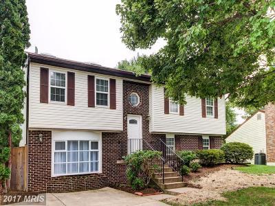 Manassas Single Family Home For Sale: 8501 Kirby Street