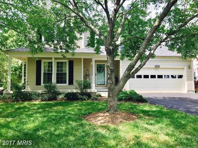 Manassas Single Family Home For Sale: 10258 Cedar Ridge Drive