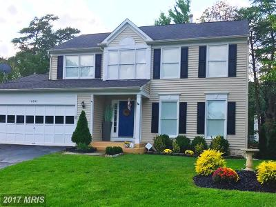 Manassas Single Family Home For Sale: 10303 Lee Manor Drive