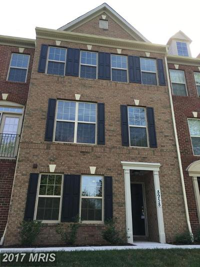 Manassas Rental For Rent: 8958 Shadia Place
