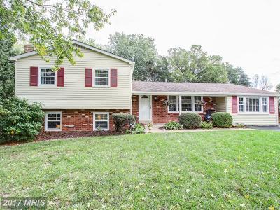 Manassas Single Family Home For Sale: 8809 Jackson Avenue