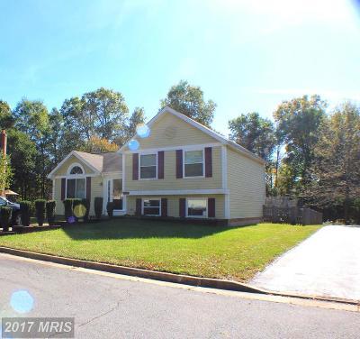 Manassas Single Family Home For Sale: 10250 Farmington Court