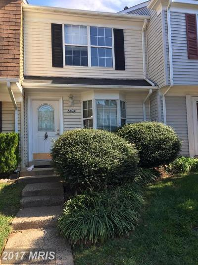 Manassas Townhouse For Sale: 8505 Braxted Lane