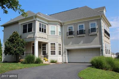 Manassas Single Family Home For Sale: 8370 Tillett Loop