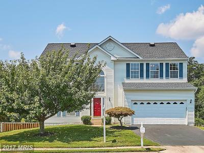 Manassas Single Family Home For Sale: 9194 Matthew Drive