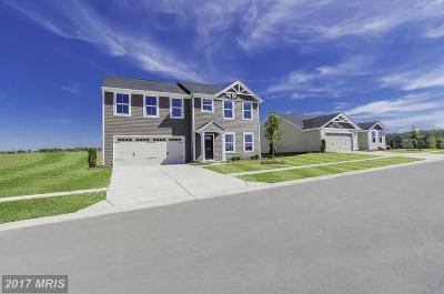 Locust Grove Single Family Home For Sale: Pheasant Ridge Road