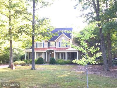 Locust Grove Single Family Home For Sale: 4228 Trail Of Faith Court