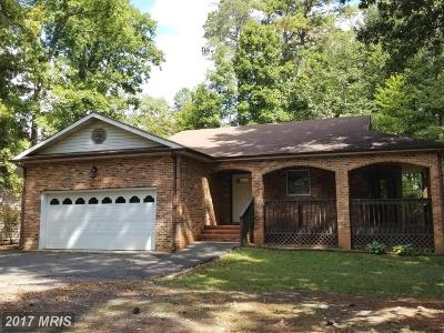 Locust Grove Single Family Home For Sale: 103 Riverdale Lane
