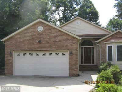 Locust Grove VA Single Family Home For Sale: $549,000