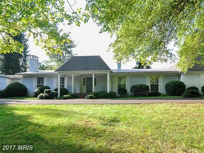 Orange Single Family Home For Sale: 10504 Little Skyline Drive