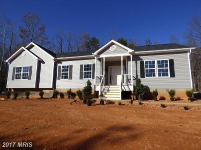 Locust Grove Single Family Home For Sale: 3978 Rapidan Hills Drive