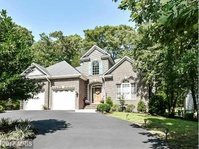Locust Grove Single Family Home For Sale: 430 Birdie Road