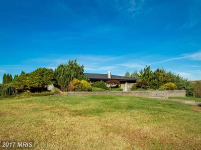 Orange Single Family Home For Sale: 12242 Greenwood Road