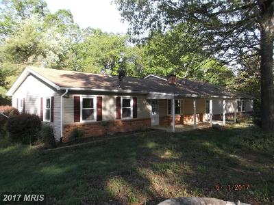 Luray Single Family Home For Sale: 178 Outpost Road