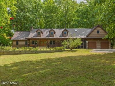 Accokeek Single Family Home For Sale: 2910 Bryan Point Road
