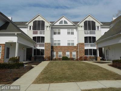 Greenbelt Rental For Rent: 6520 Lake Park Drive #3