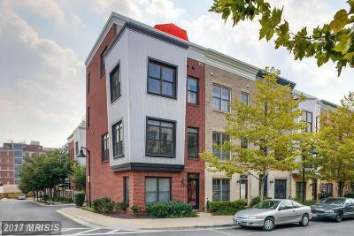 Hyattsville Rental For Rent: 4411 Longfellow Street