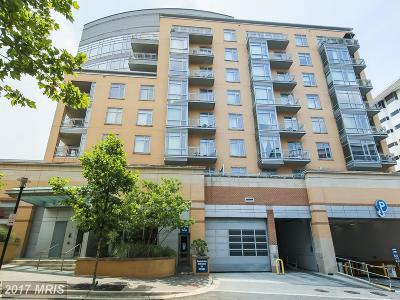 Hyattsville Rental For Rent: 6506 America Boulevard #513