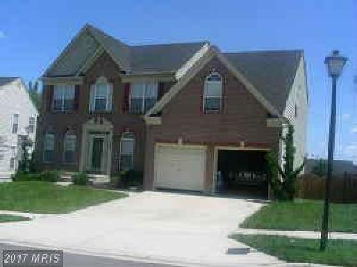 Beltsville Rental For Rent: 12909 Northampton Drive