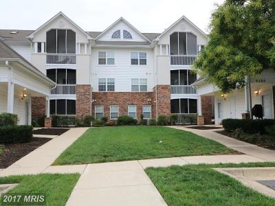 Greenbelt Rental For Rent: 6522 Lake Park Drive #3